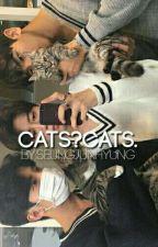 cats + kim jihun by seungjunhyung