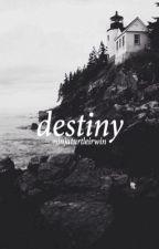destiny - malum by ninjaturtleirwin