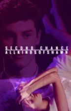 Second Chance//Shawn Mendes & Camila Cabello by AllKindsOfShawn