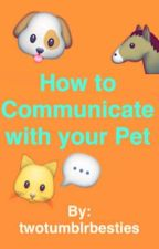 How to Communicate with your Pet // twotumblrbesties  by twotumblrbesties
