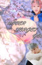 Never forget you (Seventeen yaoi) by AHannie