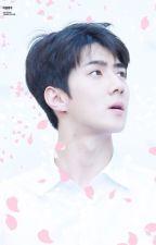 I Longfic I Edit I SeYoon I Chỉ cho em cưng chiều anh by j2yoon_