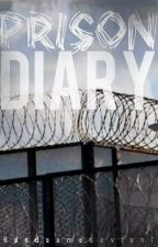 Prison Diary by Handsomedeviant