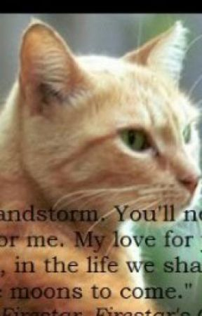 Warrior cat quotes -fanfic- - Chapter four: Fireheart quotes