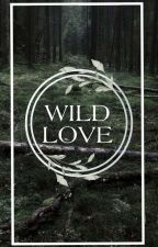 Wild love [Sterek] by decadentdreamlandkin
