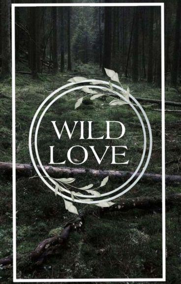 Wild love [Sterek]
