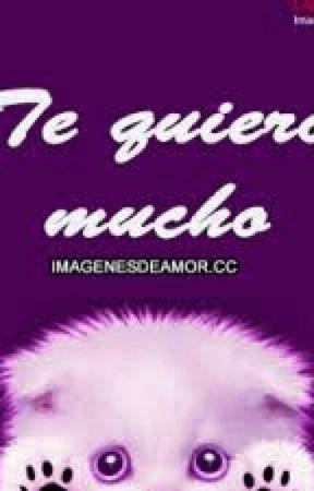Te Quiero Mucho Frases De Amor 262 Wattpad