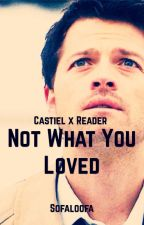 Castiel x Reader: Not What You Loved (DISCONTINUED) by Sofaloofa