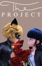 The Project (COMPLETED)   Miraculous Ladybug   Marichat/Adrienette   by chatnoirette