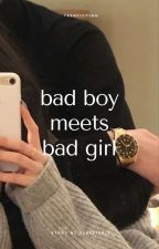 Bad Boy Meets Bad Girl [COMPLETED] by blue_panda08