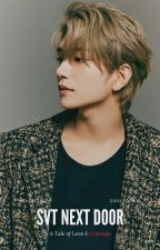 seventeen next door | svt by susheep