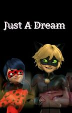 Just A Dream [LadyNoir] by marinettexofficial