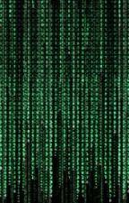 The Matrix Revisited by durathor