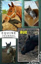 MY EQUINE JOURNAL by SaddlesAndSpurs