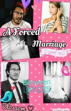 A Forced Marriage (MarkiplierxReader) by SpookyBabe