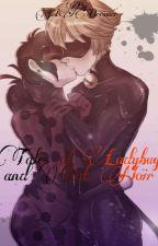Ladybug e Cat Noir by Marichat557