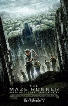 The Maze Runner (FanFiction)  by Amns22