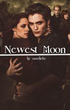 Newest Moon (Another Twilight) by LeviHeichouEren