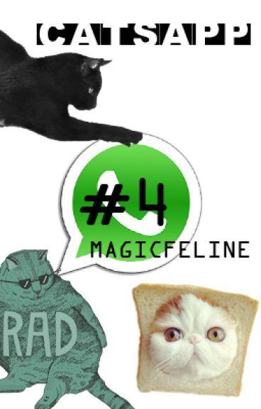 Catsapp #4: Antes Del Lag [Warrior Cats Whatsapp]