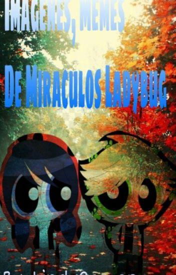 Imagenes, Memes De Miraculos Ladybug
