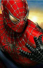 Spiderman und Ich ?!?! by vicky044