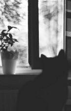 [Fanfic Khải Nguyên] Tôi Nhìn Qua Khung Cửa Sổ (Hoàn) by KarinKr1301