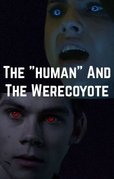 """The """"human"""" and the werecoyote// stalia au NOT CONTINUING"""