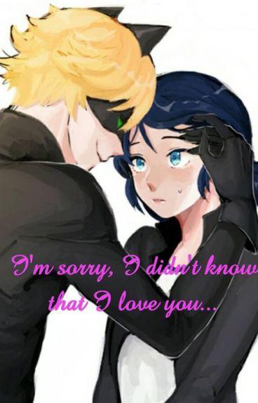Przepraszam, że Cię kocham.../ miraculous
