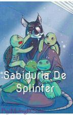 Sabiduria De Splinter by MidnightSama