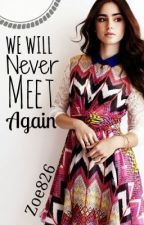 We Will Never Meet Again - Book 2 of the 'We Meet Again' series by Zoe826