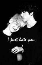 I Just Hate You (SeBaek) by phanttomhive