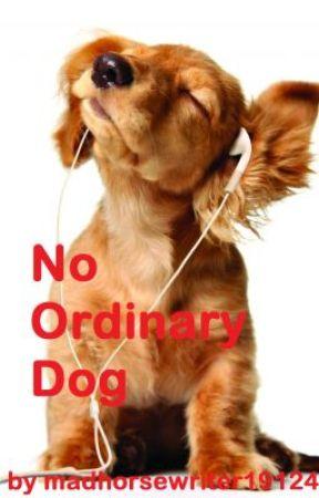 No Ordinary Dog by madhorsewriter19124