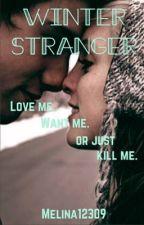 Winter Stranger by melina12309