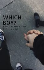 Which boy? - The Vamps Fanfic by lol0121