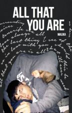 all that you are » ziam au [✓] by stlkhlmstyles
