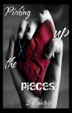 Picking Up the Pieces (ON HOLD TEMPORARILY) by penguinlover4life