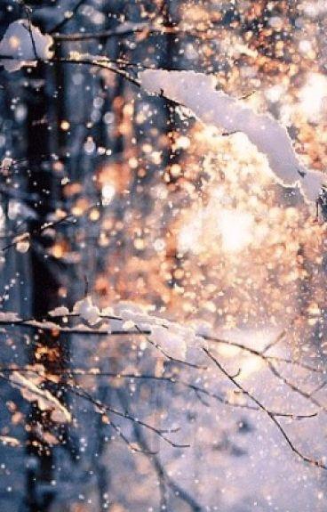 Snowed In by citydreamer