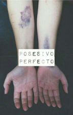 Posesivo Perfecto |N.S.| Smut by narrykkings