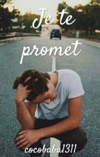 Je te promet ... by parolesdemerde