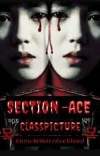 SECTION-ACE : [CLASS PICTURE ] by silently_cry