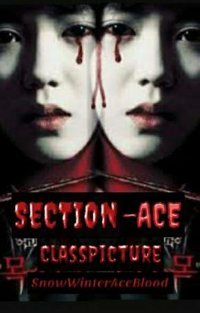 Section-Ace: {CLASS PICTURE} by SnowWinterAceBlood