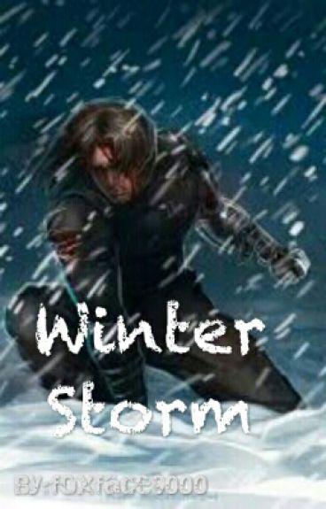 Winter Storm (Bucky x Reader)