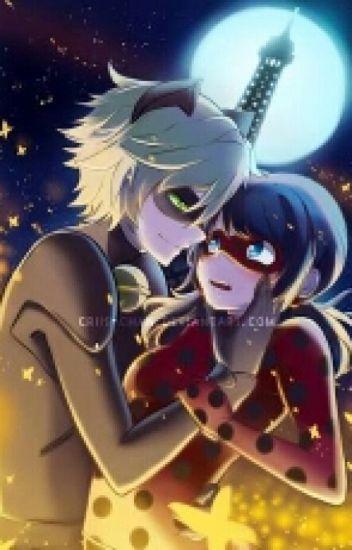 Lady Bug Y Chat Noir: Amores Y Desamores