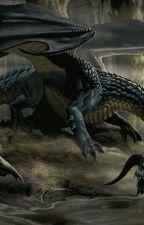 The Last Dragonboy by EthanHorn