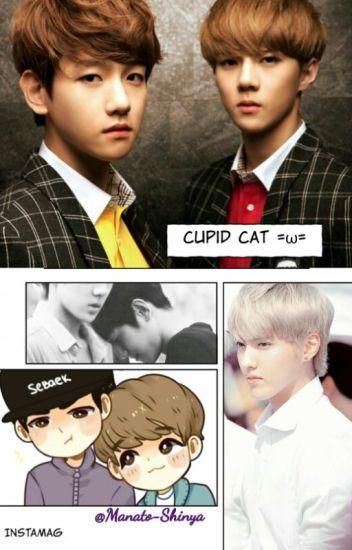 Cupid Cat =ω=