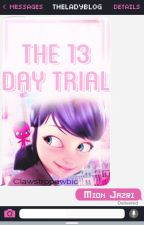 The 13 Day Trial by TheLadyblog