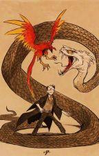Harry Potter ... horkruks by AtenaPL