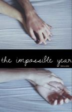 The Impossible Year by ThatConcertLife