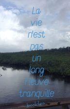 La vie n'est pas un long fleuve tranquille by bookleo