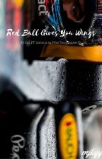Red Bull gives you wings || Max Verstappen by mjkyyy